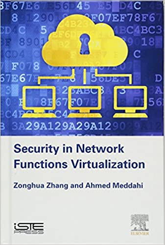 Security in Network Functions Virtualization (Networks and