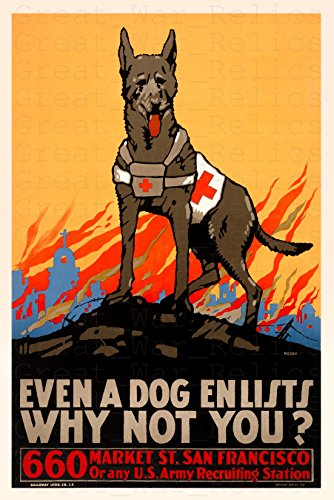 UpCrafts Studio Design American Propaganda Poster - Size 11.7 x 16.5 - Even A Dog ENLISTS WHY NOT You?- Vintage San Francisco Art Prints Reproduction - WW1 American Military Wall Art Decorations