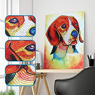 Euone_Home 5D DIY Diamond Painting Kit, Rhinestone Pasted Diamond Painting Full Drill Cross Stitch, Embroidery Paintings Wall Art Decor for Living Room Bedroom: Home & Kitchen