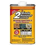 Sunnyside 63532 2-Minute Remover Advanced Paint