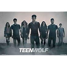 Trends International RP13825 Teen Wolf Ash Wall Poster