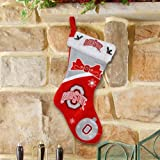 Ohio State Buckeyes Colorblock 2010 Plush Christmas Stocking