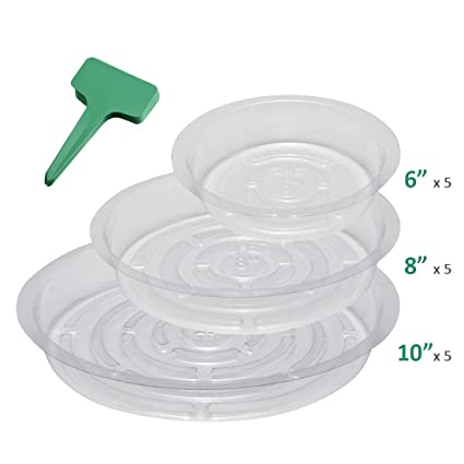 GROWNEER 15-Pack Clear Plant Saucer Drip Trays w/ 15 Pcs Plant Labels Plastic Plant Pot Saucers Flower Pot Set for Indoor Outdoor Garden Assorted Sizes ...  sc 1 st  Amazon.com & Amazon.com : GROWNEER 15-Pack Clear Plant Saucer Drip Trays w/ 15 ...