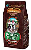 2LB Pablo's Pride Gourmet Coffee - Guatemala - Medium-Dark Roast Whole Bean Coffee - 2 Pound ( 2 lb ) Bag