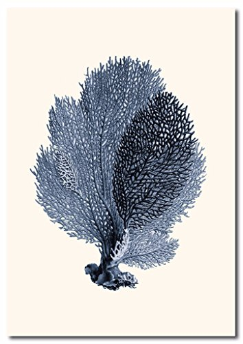 (Sea Fan Coral Canvas Wall Art Beautiful Picture Prints Living Room Bedroom Home Decor Decorations UnStretched and No Framed 20