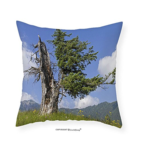 VROSELV Custom Cotton Linen Pillowcase Nature Old Spruce Tree Coming Back to Life from Death in Summer Meadow Country Image for Bedroom Living Room Dorm Blue Olive Green (Spruce Square Clock)