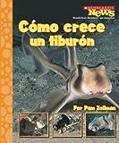 Como crece un tiburon / A Shark Pup Grows Up (Scholastic News Nonfiction Readers En Espanol) (Spanish Edition)