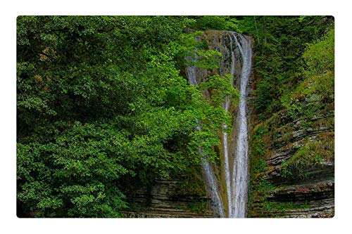 Indoor Floor Rug/Mat (23.6 x 15.7 Inch) - Lake Forest Waterfall Sinop Trees Green Water 2