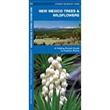 New Mexico Trees & Wildflowers: A Folding Pocket Guide to Familiar Species (Pocket Naturalist Guide Series)