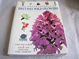 img - for Encyclopaedia of Wild Flowers by John Akeroyd (2001-09-06) book / textbook / text book