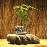 Japanese style Levitating Air Bonsai Pot - Magnetic Levitation Suspension flower (1)