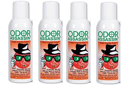 Odor Assassin Orange, Set of - Spray Industrial Am