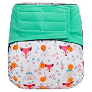 HappyEndings  Night, Night TM Velcro Charcoal Bamboo All In One Diaper (+Pocket & 5 Layer Charcoal Bamboo Insert)  Tribal Fox