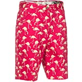 Royal & Awesome Birdie Breeks Patterned Mens Golf Shorts, 36' Waist