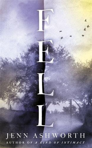 book cover of Fell