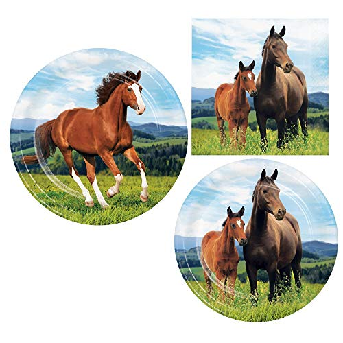 Horse and Pony Birthday Party Supply Pack! Bundle Includes Paper Plates and Napkins for 8 Guests