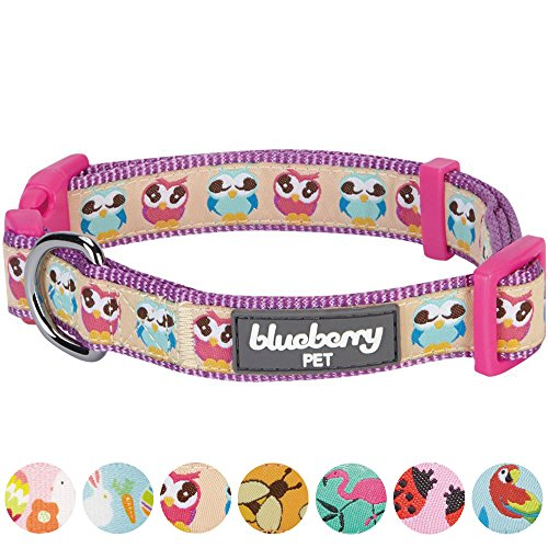erns Statement Nighty Owls Designer Dog Collar, Small, Neck 12