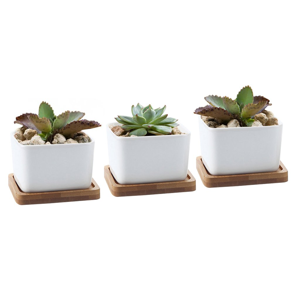 Y8HM 3.54 inch White Ceramic Contemporary Square Design Succulent Pots, Succulent Cactus Flower Plant Pot with Bamboo Tray, Set of 3