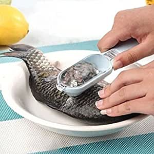 Amazon.com: Fish Scales Skin Remover Scaler Fast Cleaner Brush Kitchen Clean Use Tool: Health ...