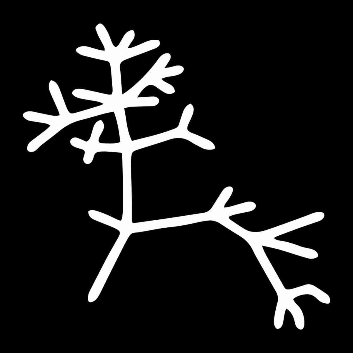 "EvolveFISH Darwin Tree of Life Outline Weatherproof Vinyl Decal - [White][5""]"