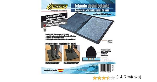 INTACTO Felpudo DESINFECTANTE, Medidas 1000x650 mm.: Amazon.es: Hogar