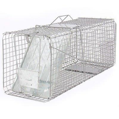 "Raccoon Skunk Poss Humane Animal Trap 31""x12""x12"" Cage Rabbi"