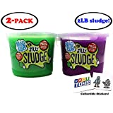 2 LB (Pound) MEGA Mad Lab Ultra Neon Silly Sludge Slime for Kids in Assorted Neon Colors (2 Pack - 1 lb Each) Educational Stress Relief Toy and Sensory Stimulation with 2 GosuToys Stickers
