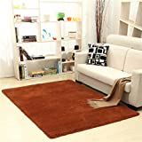 Rug WAN SAN QIAN- Children Bedroom Carpet Nordic Carpet Living Room Carpet Sofa Europe Princess Rectangle Blended Carpet Coarse Shag (Color : Brown, Size : 100x160cm)