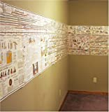 Adam's Chart of History: A Chronology of Ancient, Modern, and Biblical History-Timeline-Panels only