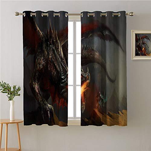 Dragon Callies - Jinguizi Medieval Grommet Privacy Assured Window Treatment,Fantasy Scene Fearless Knight with Dragon Mythology Art Antique,Night Darkening Curtains,55W x 39L