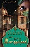 Flucht aus dem Morgenland: Frauenroman (German Edition)