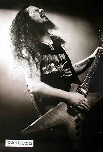 Dimebag Darrell Pantera Metal Band Guitarist Music Poster Si