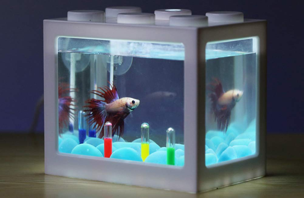 Ecological Aquarium Box Acuario De Sobremesa Mini Pequeño Betta ...
