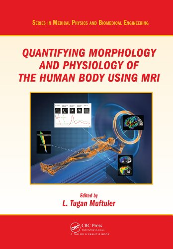 Quantifying Morphology and Physiology of the Human Body Using MRI (Series in Medical Physics and Biomedical Engineering)