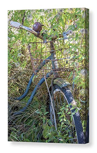Vintage Bicycle Photographic CANVAS Print Rusty Schwinn Bike Picture Rustic Wall Art Nostalgic Gift Country Home Decor Rural Photography Ready to Hang 8x12 12x18 16x24 20x30 24x36