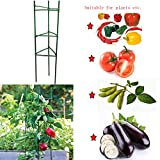 f.o.t Plant Cages Tomato Garden Cages Stakes