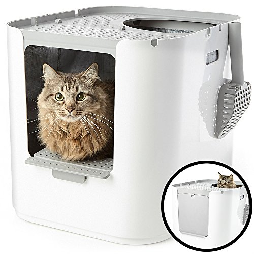Modkat XL Litter Box, Top-Entry or Front-Entry Configurable, Reduces Litter Tracking