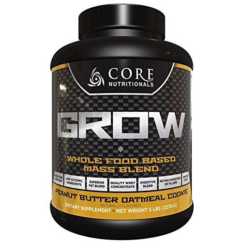 Cheap Core Nutritionals Core GROW Peanut Butter Oatmeal Cookie 5lb