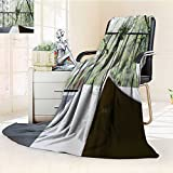 YOYI-HOME Duplex Printed Blanket Custom Design Cozy Fleece Blanket A Flower vase on The windowsill Warm Microfiber All Season Perfect for Couch Sofa/79 W by 59'' H