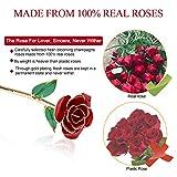 ZJchao 24K Red Rose Christmas Gift for Her, Forever