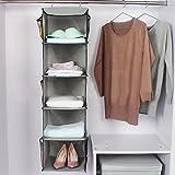 TABITORA Hanging Clothes Storage Box (5 Shelving Units) Durable Accessory Closet Cubby Sweater Handbag Organizer- Keep Your Wardrobe Clean Tidy organizers