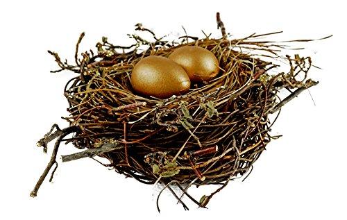 Woodland Birds Nest with Golden Eggs Spring Decoration