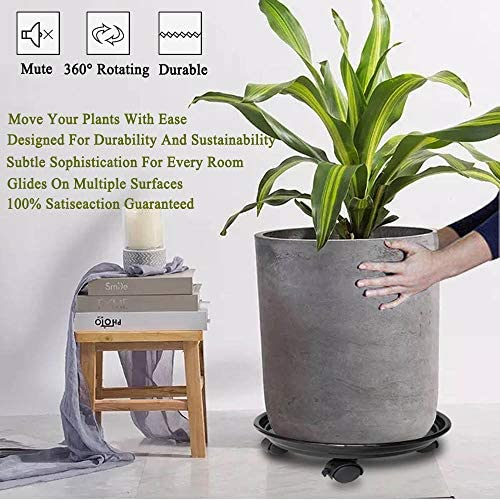 Amazon.com: Murilan - Organizador de plantas con ruedas ...