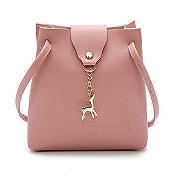 1eeb632f487a Amazon.com: Women Messenger Bags Fashion Ladies Crossbody Mini Bag ...