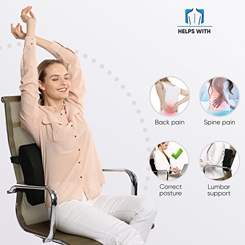 Everlasting Comfort 100% Pure Memory Foam Back Cushion - Orthopedic Design for Lower Back Pain Relief - Lumbar Support Pillow, 2 Adjustable Straps For Car or Office Chair