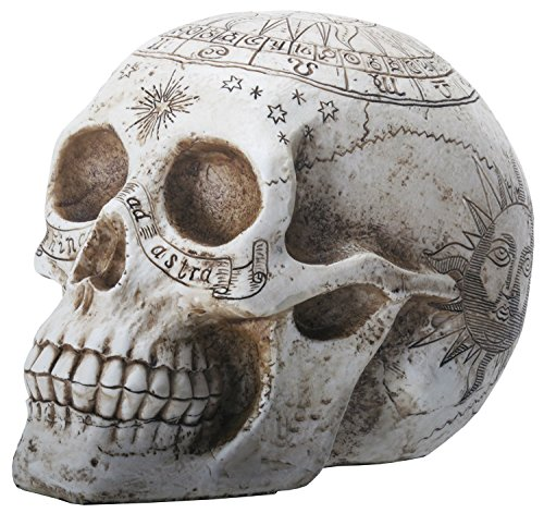 YTC 7.75 Inch Resin Skull with Astrology Engravings, White Colored]()