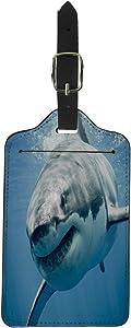 Pinbeam Luggage Tag Blue Threat Great White Shark Smiling Predator Smile Suitcase Baggage Label