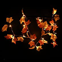 Decorations Lighted Fall Garland | 8.2 Feet | 20 Lights