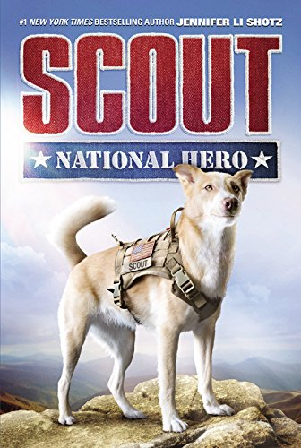 Scout: National Hero -