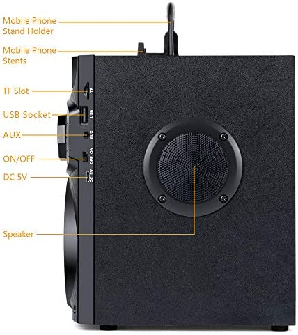 Bluetooth Speakers, Wireless Speaker with Impressive Sound, Booming Bass, Wireless Stereo Pairing, Portable Speaker with Party Light, Support Remote Control FM Radio for Phone Computer PC Home TV